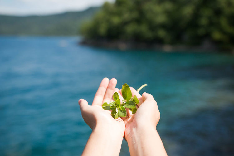 Cropped Image Of Person Holding Herbs Against Lagoon