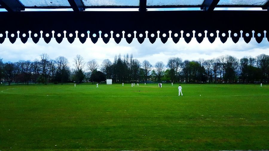 Teahive Rows Of Things Cricket Pitch English Afternoon Tea From My Point Of View