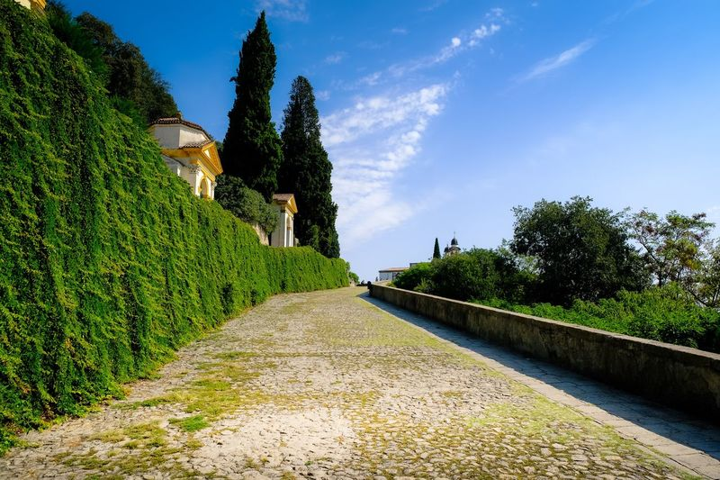 Villa Duodo e Chiesa di San Giorgio EyeEm Partner Selection © Eyeem Sales Historical Plant Sky Growth Tree Nature Green Color Sunlight Outdoors Tranquility Cloud - Sky Footpath Park - Man Made Space No People Day Beauty In Nature Tranquil Scene Topiary Park Field Hedge Capture Tomorrow