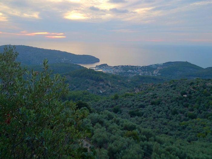 Blue&Green in Port De Sóller Soller Mallorca