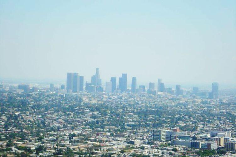 Losangeles City View  City Skyline City Of Angels Cityscapes Smog Haze Losangeleno