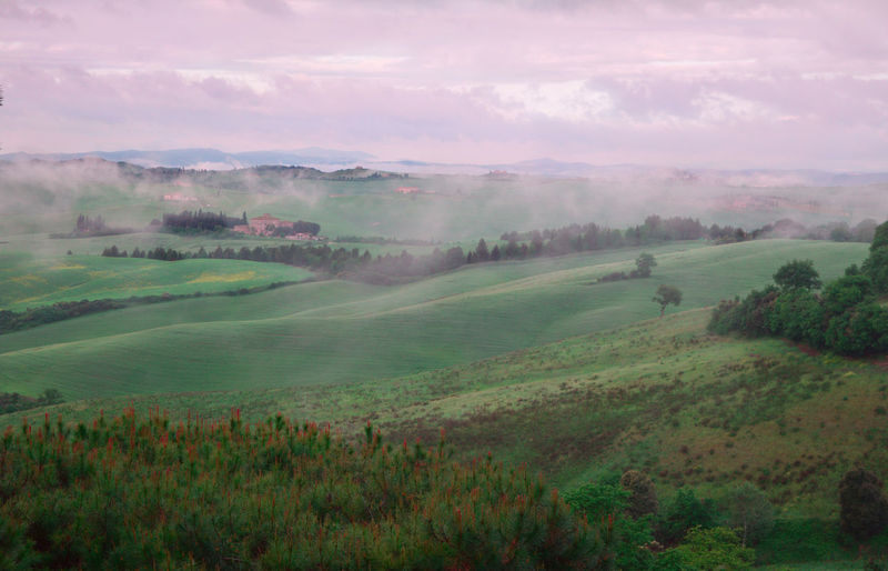 tuscany hills with morning fog Cloudy Countryside Field Fog Foggy Morning Grass Hill Landscape Nature Outdoors Rural Scene Sky The Great Outdoors With Adobe Tree