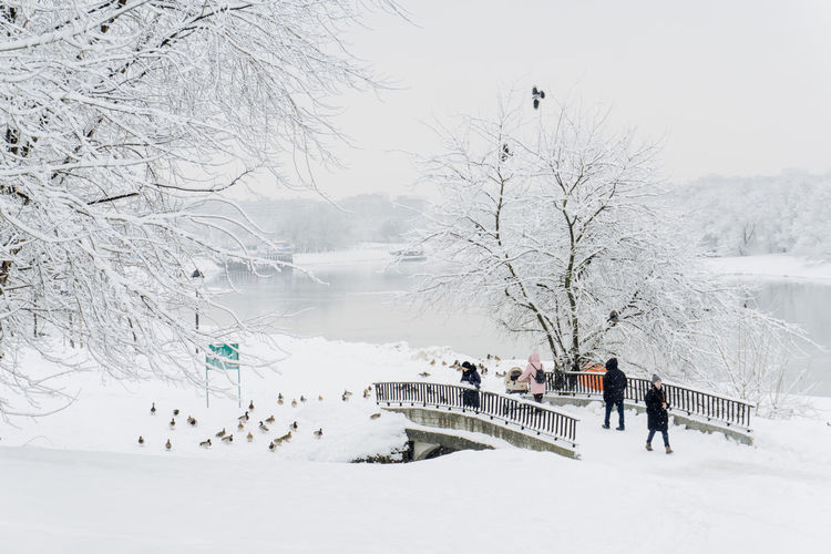 Snow Cold Temperature Winter Tree White Color Group Of People Plant Beauty In Nature Nature Real People Scenics - Nature Covering Day Land Bare Tree Incidental People Leisure Activity Architecture Men Outdoors Extreme Weather