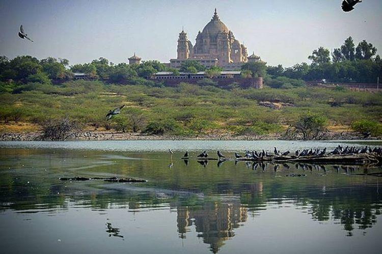 Jodhpur Bluecity Streetphotography UmaidBhawan Royal Rajwada @jodhpur_shoutout @jodhpurshoutouts @shoutouts.india Capture Click Clicks Enjoy Instago Igersjodhpur Igersjaipur Click_india_click Wwim13 WWIM13Jodhpur Followme