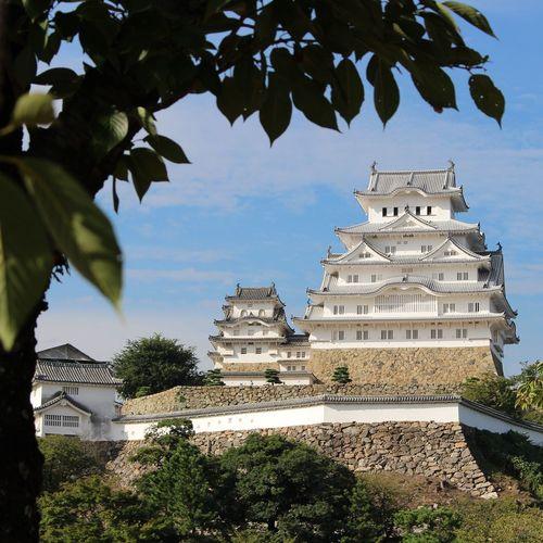 Japanese Castle Himeji Castle Egret Castle