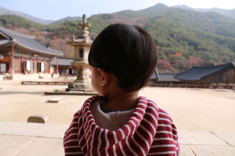 Rear view of boy at temple