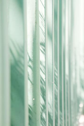 夏来衣衫短,春去暑日长,斑斑杂树影,摇上篱笆墙。 shadow Pattern Fence Shadow Sun Light Trees