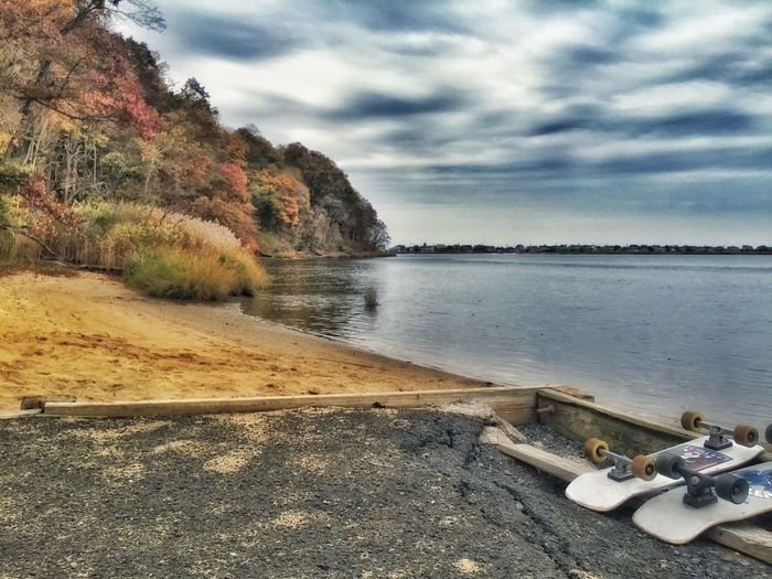 Photographic Memory IPhoneography Check This Out Hidden Places Trees Colors Skateboarding River New Jersey