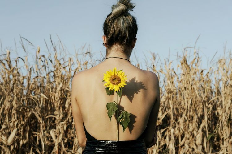 Rear view of woman with sunflower standing against plants on agricultural field