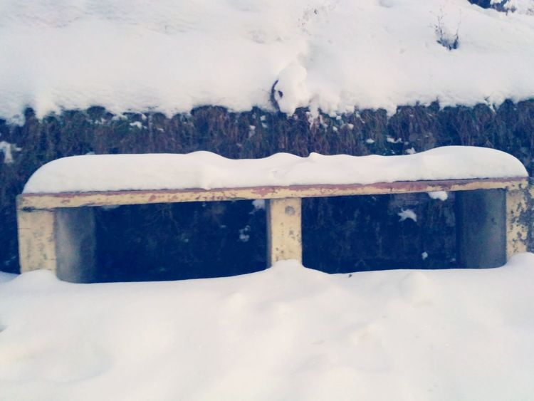 Snow ❄ Winterdiaries Wayoflife No People Check This Out Snow Emptybench Lonely Winter Travelling Photography Beauty In Nature Taking Photos Enjoying Getty Colour Of Life Snowing