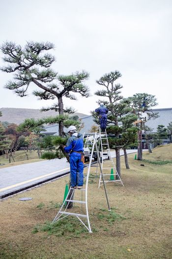 Man working in park against sky