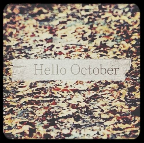 Mi mes! Hellooctober Birthdaymonth October19 Halloween