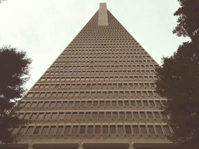 San Francisco TransAmericaBuilding Architecture Vertical Transamerica Pyramid