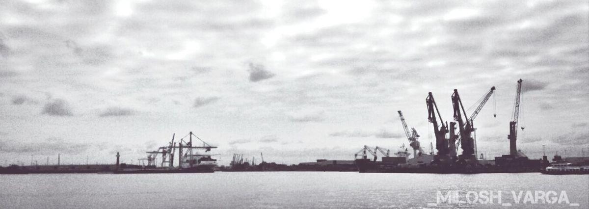 Harbour Panorama Crane Hamburg Hamburg Harbour Bnw Cranespotting Craneaddicted  Jolly Thin!