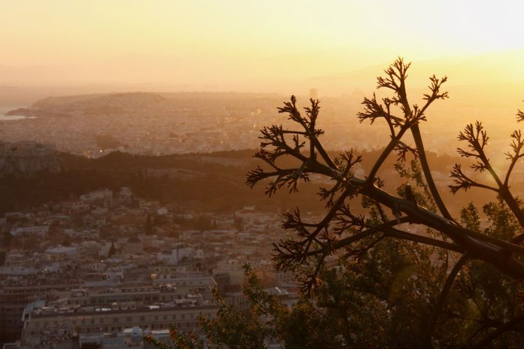 Acropolis Architecture Athens Beauty In Nature Cityscape Day Growth Landscape Lycabettus Mountain Nature No People Outdoors Scenics Sky Sunset Tranquility Tree EyeEmNewHere