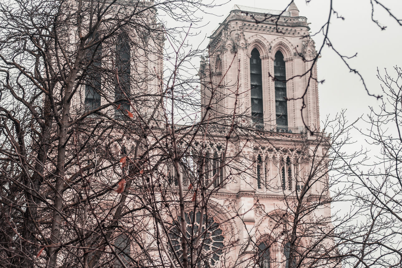 built structure, tree, architecture, building exterior, bare tree, low angle view, branch, nature, building, religion, plant, place of worship, no people, belief, day, spirituality, sky, the past, outdoors, gothic style
