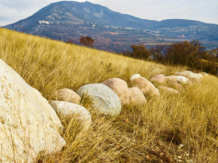 Row Of Stones View Focus On Foreground Hill Yellow Grass Scenics - Nature Tranquility Grass Landscape Tranquil Scene Nature Environment No People Day Outdoors Diminishing Perspective