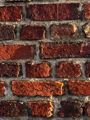 Rasant Backgrounds Full Frame Textured  Pattern No People Close-up Abstract Wall - Building Feature Red Old Brown Day Orange Color