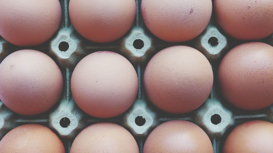 Eggs Eggs... Eggs For Breakfast Backgrounds Egg Carton Full Frame Egg Close-up Arrangement Repetition Order In A Row Many Side By Side