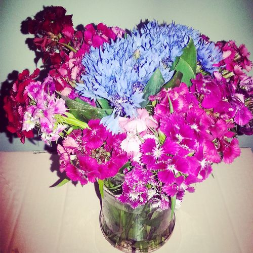 Flowers Flowersfrommylover Happygirlfriend Inlove