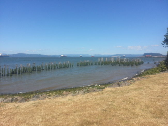 Beach Water Sand Sea Landscape Sky Sunny Tranquility Clear Sky Nature Outdoors Tranquil Scene No People Beauty In Nature Columbia River Northcoastrecovery Reflection Astoria, OR Astoria, Oregon Beauty In Nature Tranquility Wooden Post Cloud - Sky Nature Water's Edge