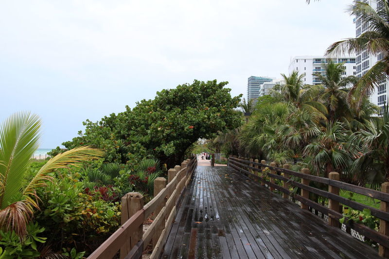 After Rain City Day Green Color Outdoors Sky The Way Forward Walkway