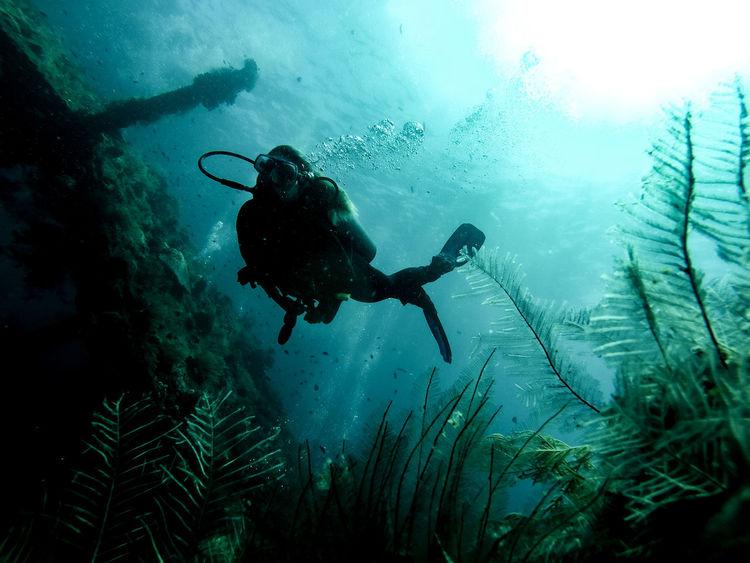 Silhouette Adventure Deep Blue Low Angle View Scuba Diver Scuba Diving Shipwreck Tulamben UnderSea Underwater Ussliberty