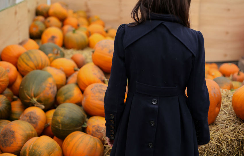 Autumn Vibes - Autumn #fall Food Pumpkin Vegetable Fruit Enjoying Life Hanging Out Taking Photos Hello World Photooftheday Check This Out Popular Photos Capture The Moment Halloween_Collection Halloween Pumpkinpatch