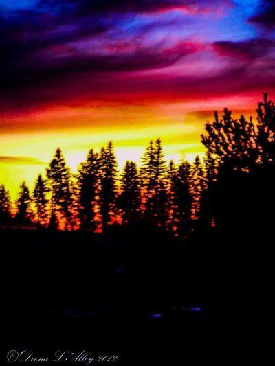 Washington Sunset Colorful Union Washington