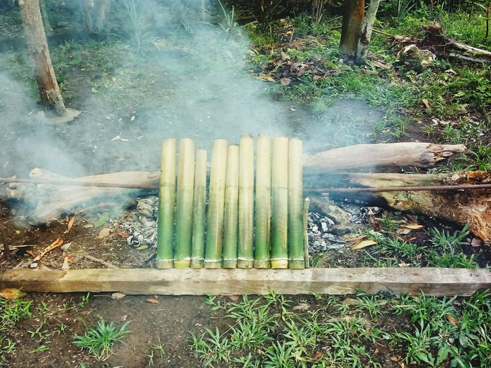 Lemang in the making. Coconut rice cooking using bamboo Outdoors Day Water No People Nature Close-up food