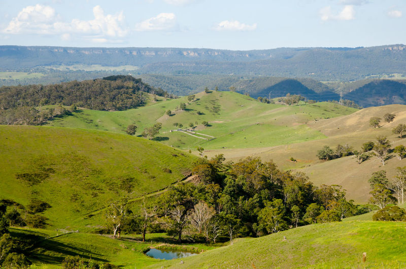 Pastures in the Blue Mountains Pasture Blue Mountains Agriculture Australia New South Wales  Nsw Field