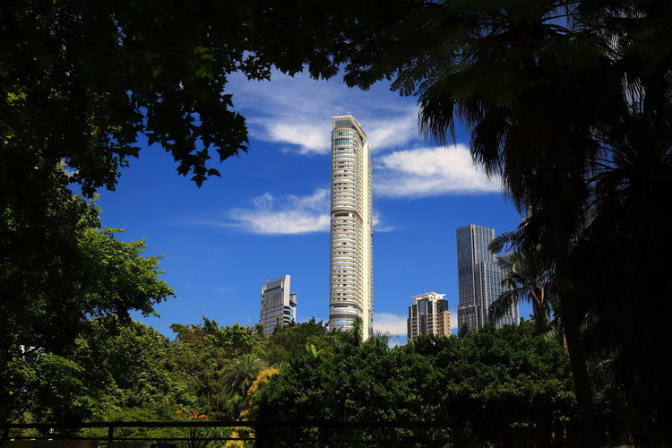 Tadaa Community Hello World Centered Center Discoverhongkong City Tree Urban Skyline Cityscape Skyscraper Sky Architecture Tall - High Building Famous Place My Best Photo
