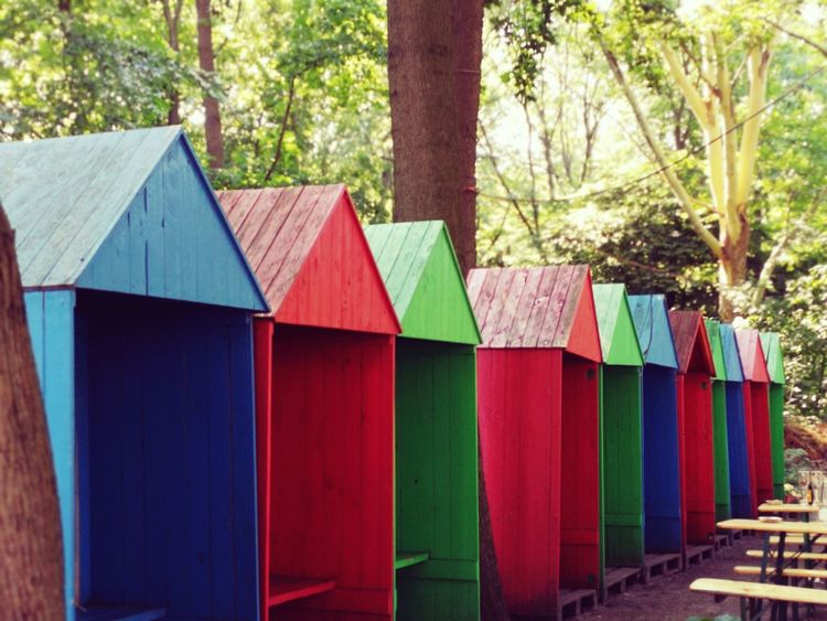 Colors Mobilephotography In The Park Tree Multi Colored Variation Wood - Material Architecture Built Structure Cabin In A Row Hut Repetition LINE