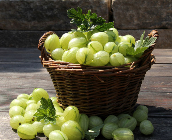 Basket Close-up Day Edible Berry Food Freshness Fruit Gooseberry Green Color Healthy Eating Nature No People Outdoors Stachelbeeren Wood - Material