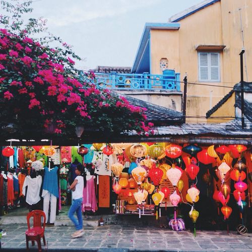 Multi colored flowers in city