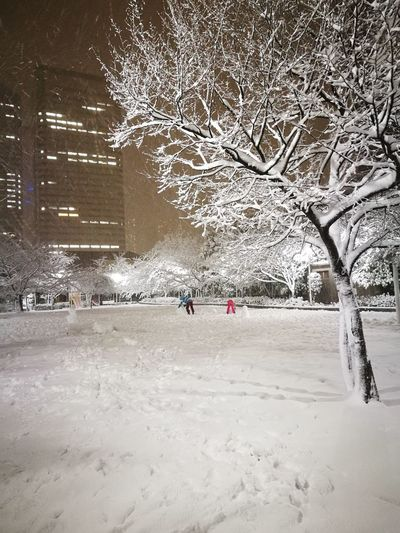 heavy snow in Tokyo Park Tree Snowman White City Cold Temperature Outdoors Winter Full Length People Snow Nature Shades Of Winter