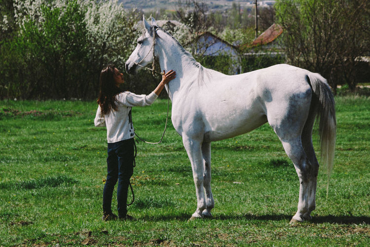 girl and horse Girl Domestic Animals One Person Livestock Horse Grass Standing Mammal Domestic Full Length Human Arm Field Day Nature Limb Outdoors Adult Land Plant Arms Raised Human Limb Herbivorous White Horse 50 Ways Of Seeing: Gratitude