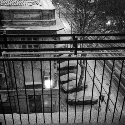 Belgrade Snow Stripes Streetphotography Street Beograd Serbia Morning