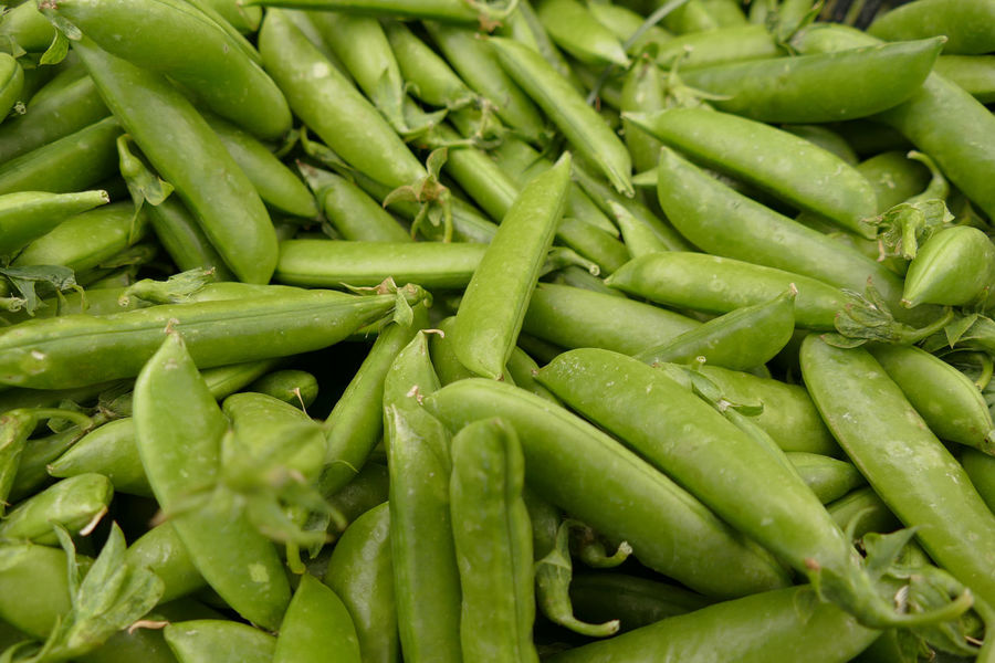 Abundance Backgrounds Close-up Day Farmers Market Food Food And Drink Foodphotography Freshness Fruits And Vegetables Full Frame Green Color Green Peas Healthy Eating Heap Large Group Of Objects Market Market Stall No People Outdoors Peas Raw Food Vegetable