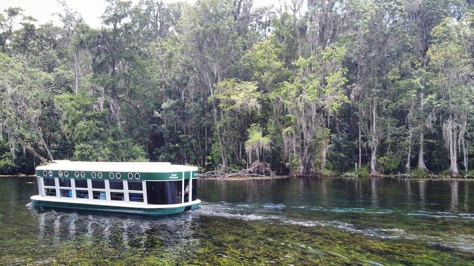 Glass Bottom Boat River Boat Florida Glass Bottom Boat
