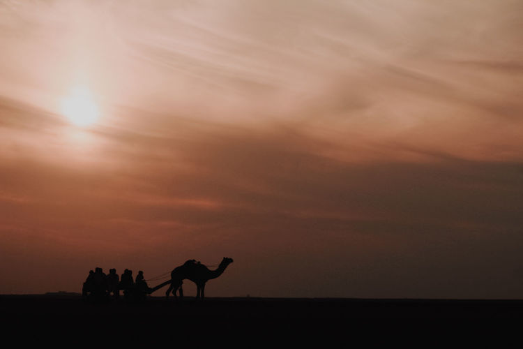 Silhouette people riding horse on beach against sky during sunset