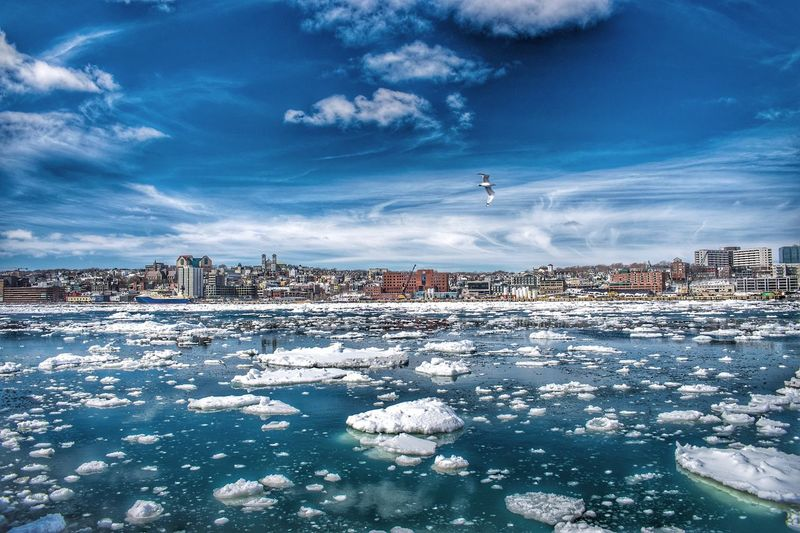 Looking across the ice filled harbour towards historic downtown St. John's, Newfoundland. Cold Temperature Snow Winter City Building Exterior Frozen Sky Architecture Cityscape Built Structure Cloud - Sky Outdoors No People Nature Day Residential Building Water Scenics Animal Themes Beauty In Nature