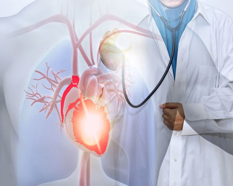 Female doctor isolated on white background checking your heartbeat with stethoscope. Doctor  Nurse Life Nursing Adult Backgrounds Check Up Clothing Concept Conceptual Photography  Doctor  Expertise Healthcare And Medicine Heart Heart Attack Heart ❤ Heatbeat Hospitality Indoors  Lab Coat Medical Equipment Medical Instrument Medical Supplies Occupation Phamaceutical Stethoscope
