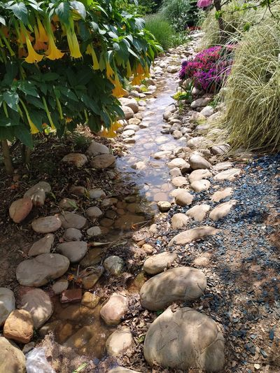 Stones on footpath
