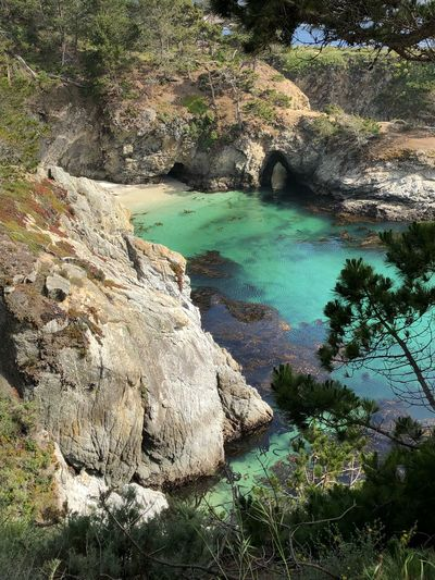 Pointlobos Water Tranquility Beauty In Nature High Angle View Nature Day No People Sunlight Scenics - Nature Rock - Object Non-urban Scene Green Color Tranquil Scene Idyllic Outdoors