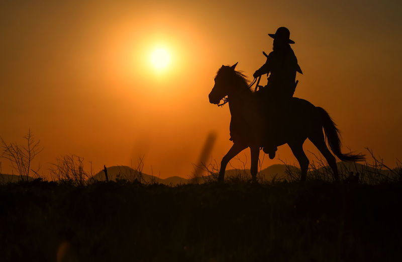 Silhouette of person riding horse on field during sunset