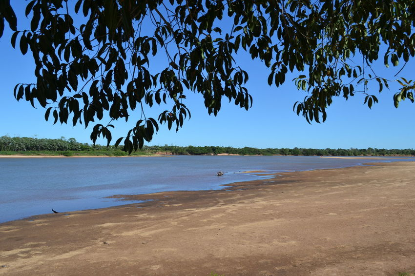 River View Riverside Beach Beauty In Nature Blue Clear Sky Day Dry Drying Horizon Over Water Landscape Nature No People Outdoors River Sand Scenics Sea Shore Sky Tranquil Scene Tranquility Tree Water Water_collection