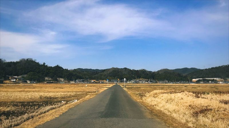 Sky Cloud - Sky Direction The Way Forward Plant Tree Diminishing Perspective Nature Road Day No People Landscape Blue