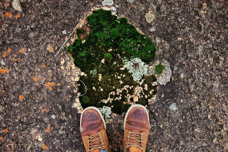Low section of person standing by moss on rock