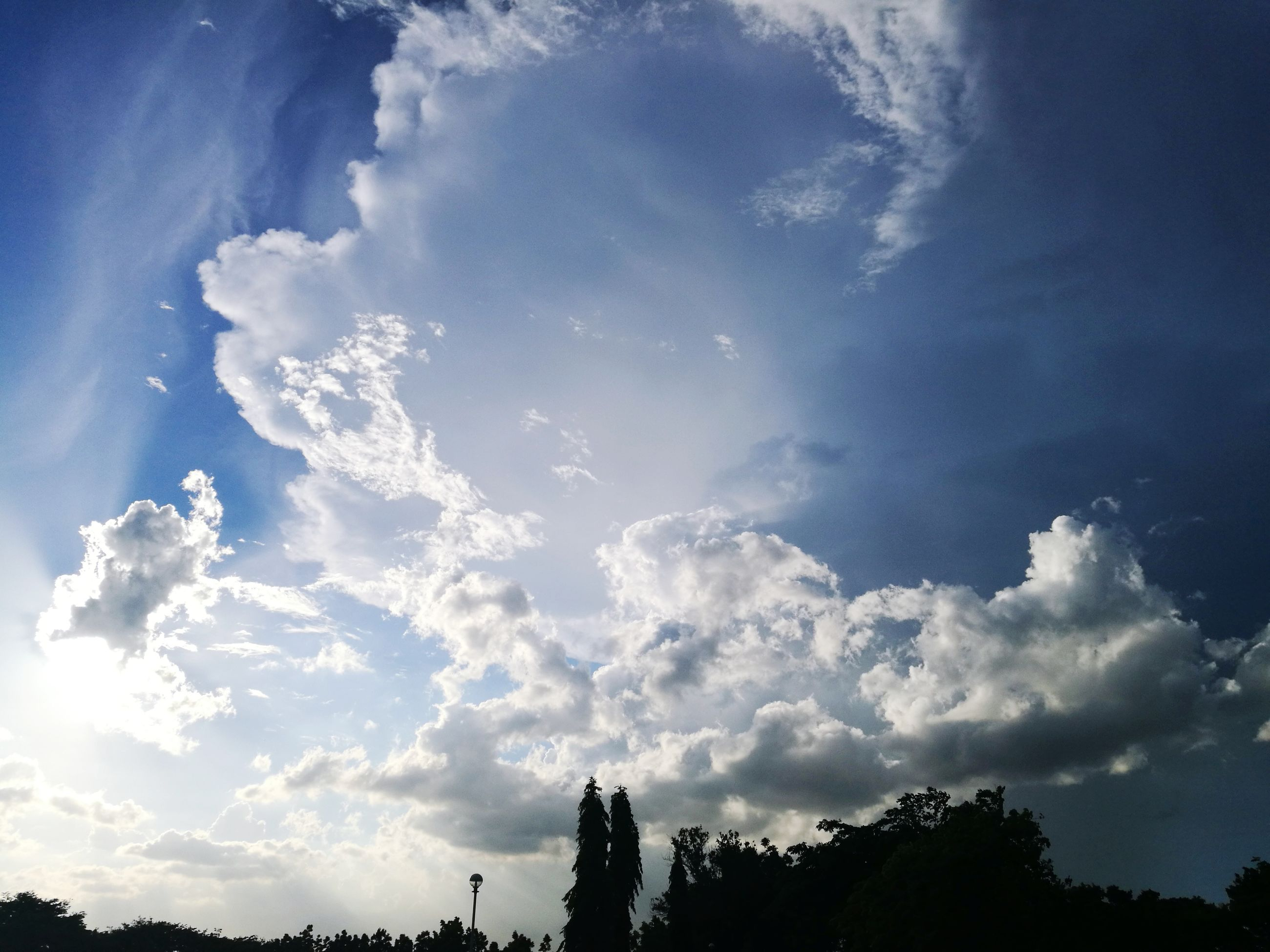 sky, cloud - sky, low angle view, no people, tree, nature, beauty in nature, tranquility, outdoors, day, scenics, blue